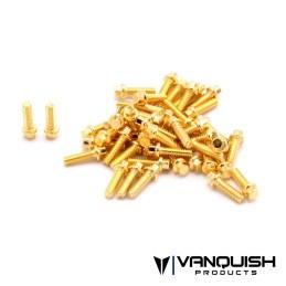 Kit de vis US 1-64 GR8 Scale Vanquish plaqué acier - VPS05004